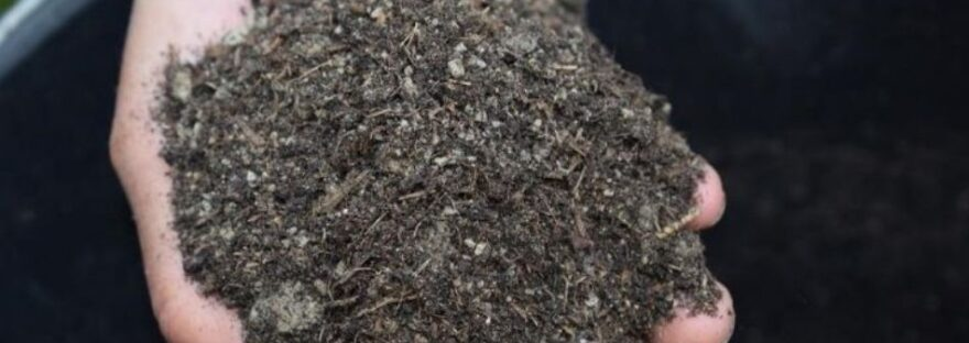 Why Compost